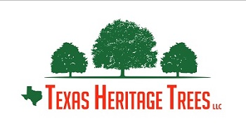 Texas Heritage Trees Logo