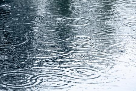 Heavy Rain Expected Fri-Sat